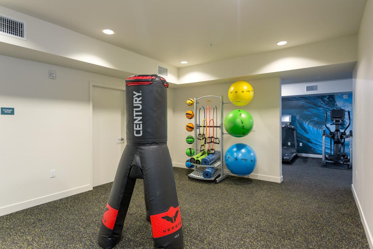 Gym2_VirgilWEB